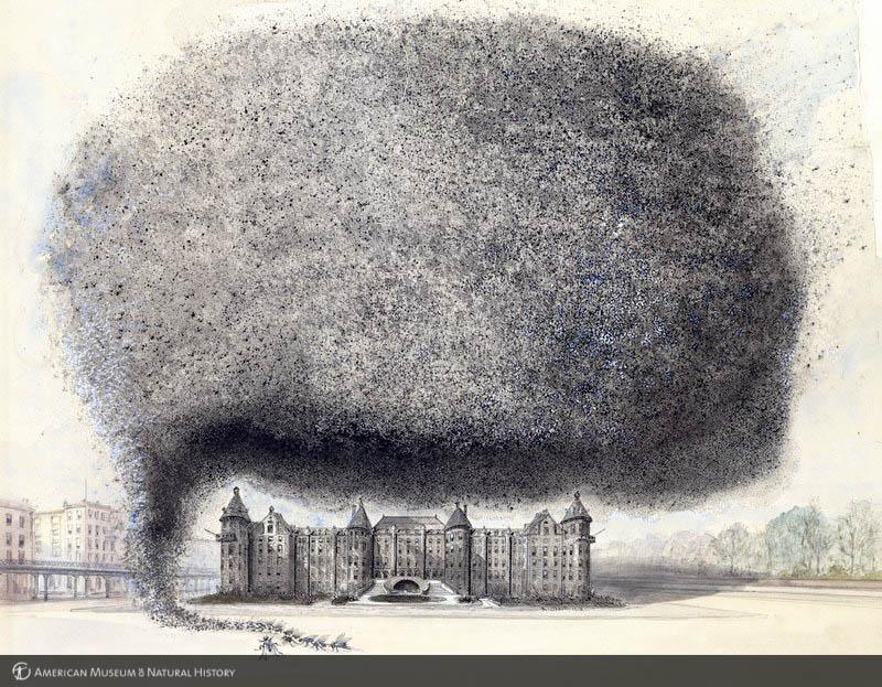 """Albert Operti's """"Swarm of Flies over AMNH"""""""