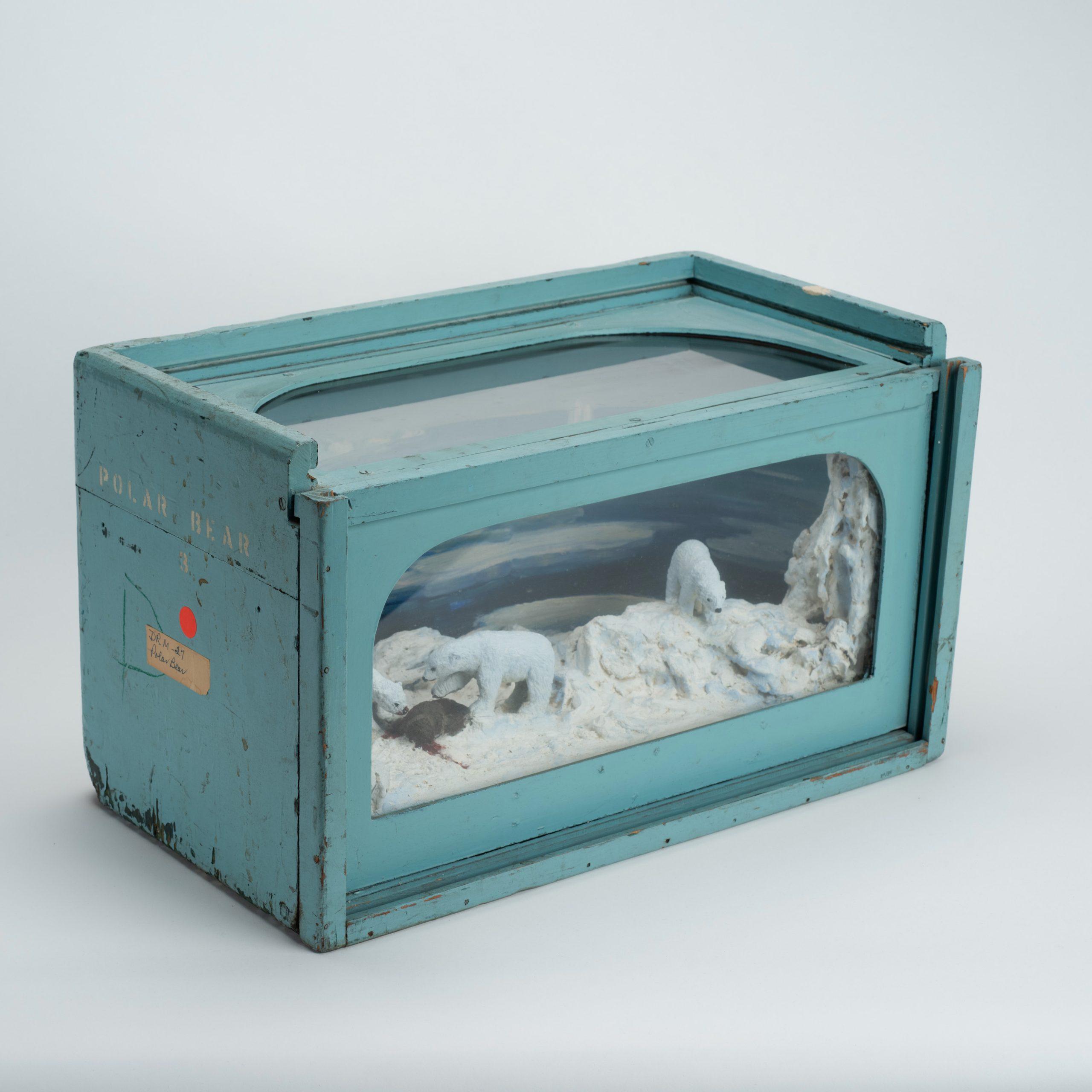 Polar bear diorama
