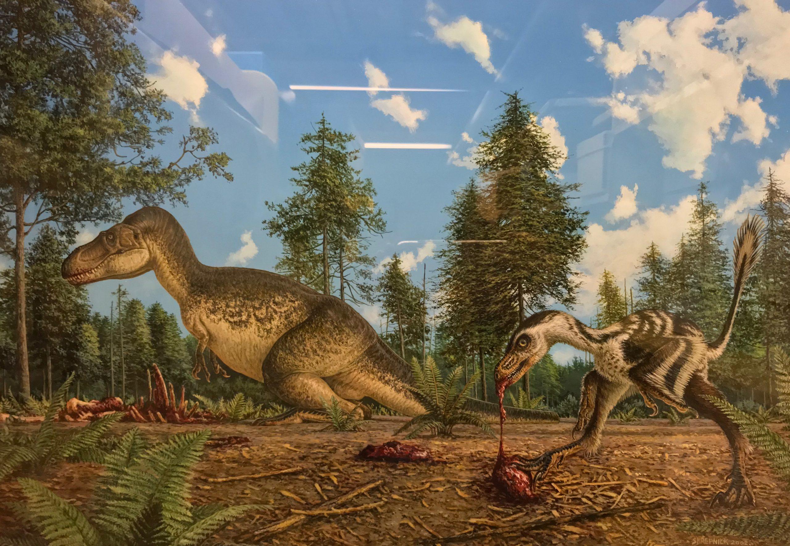 Skrepnick's Bambiraptor
