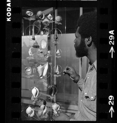 Viewing exhibit